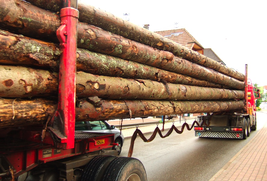 Holztransport